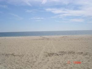 Cape Cod Beach Rental - Covell Beach