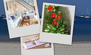 Cape Cod Holiday Rental Collage
