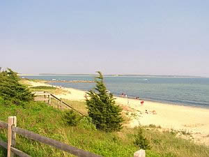 cape cod beach rentals :: sea st beach